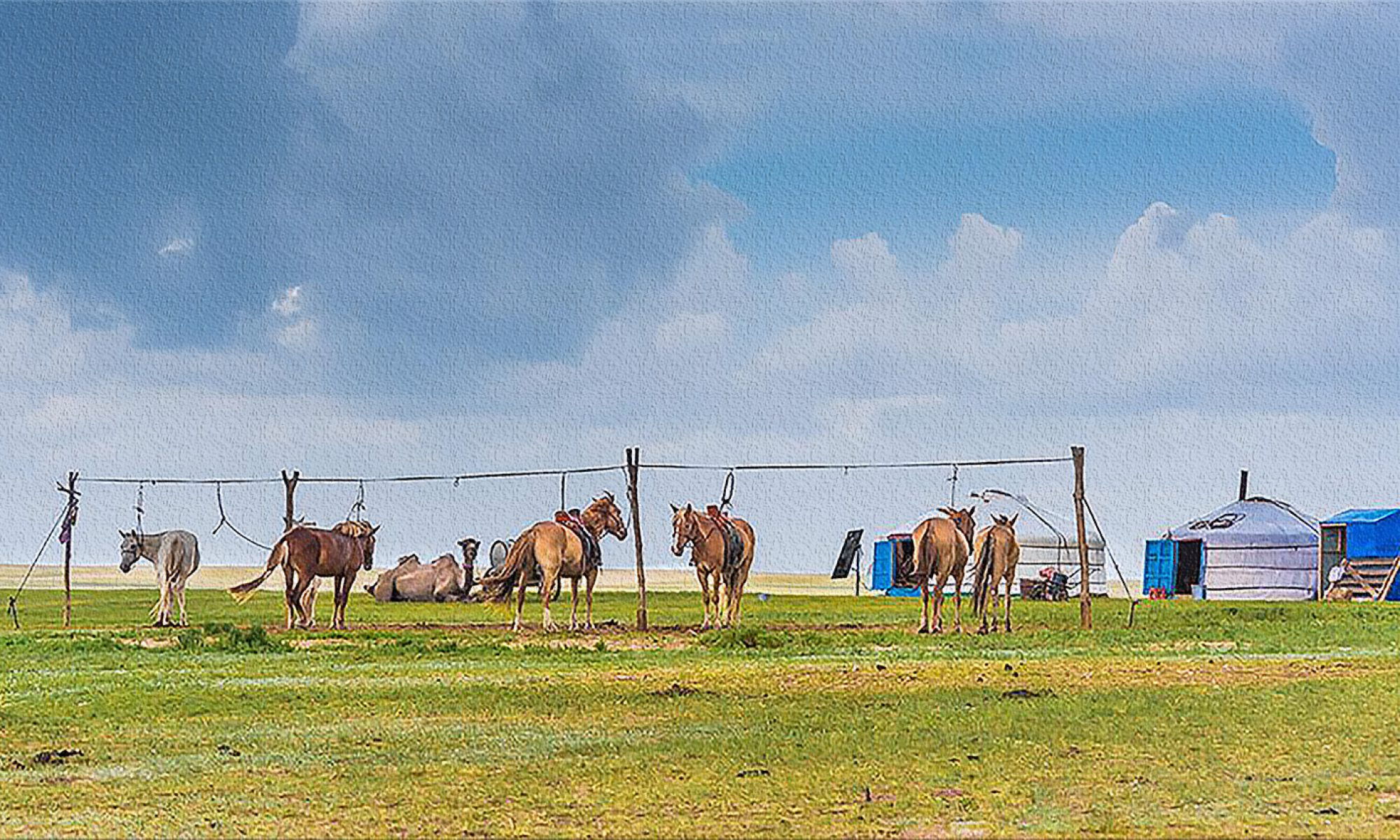 NARMAI モンゴル